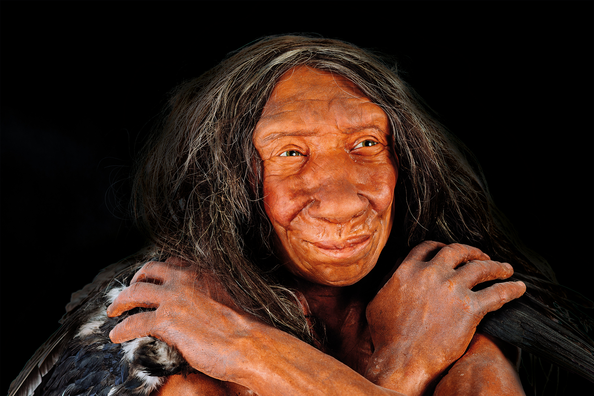 expona : The Neanderthal Woman - Edmèe- museum exhibition network